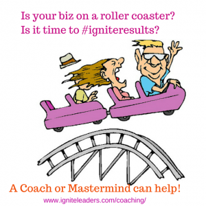 Is your biz on a roller coaster-Is it (2)